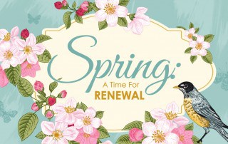 Spring time renewal