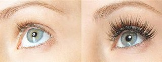 amplifeye your lashes